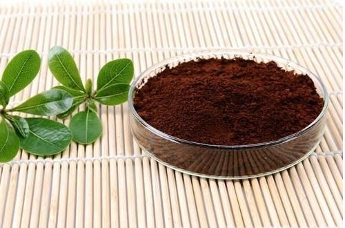 灵芝孢子粉的正确吃法?要注意哪些方面?
